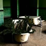 Efeu in Badewanne mit Cinema 4D Tutorial und Ivy Grower