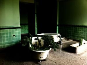 Efeu in Badewanne mit Cinema 4D und Ivy Grower